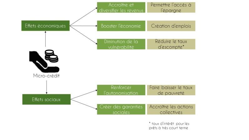 Les principaux objectifs du micro-crédit, FAO